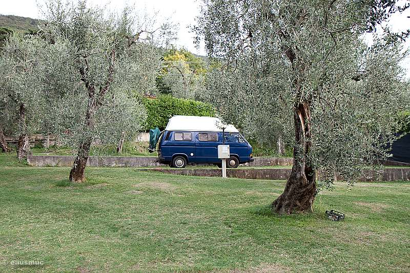 VW Bus am Campingplatz