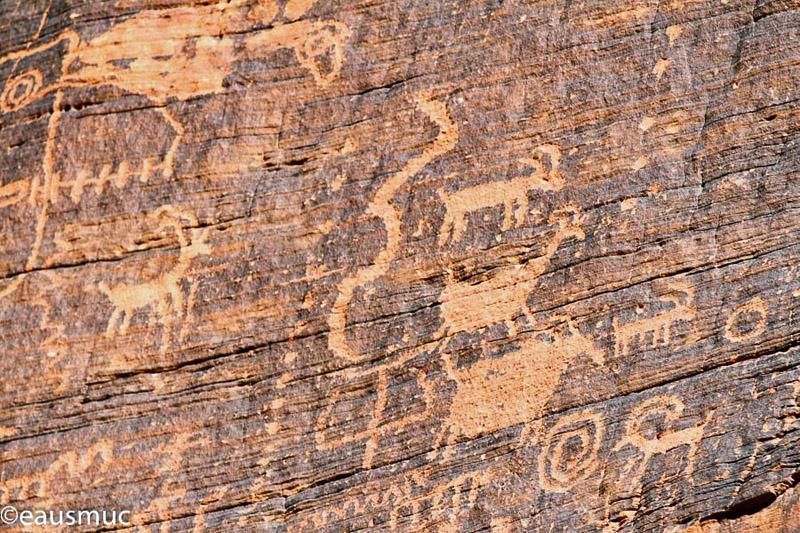 Petroglyphs Mouses Tank